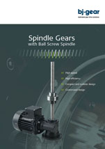 BJ Gear Spindle Gears with Ball Screw Spindles